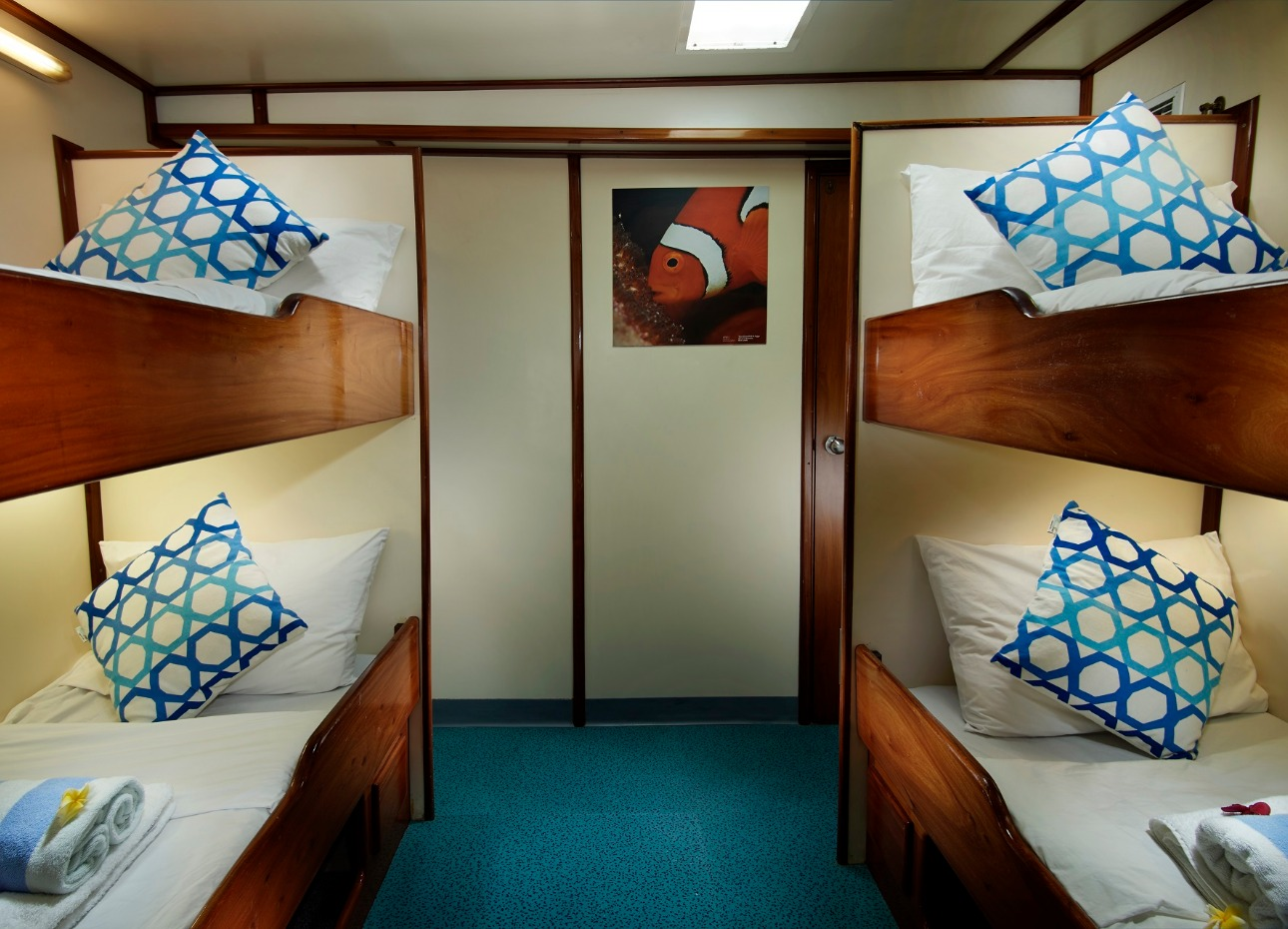M/V Papa New Guinea, Solomons Master, Twin Cabin, image